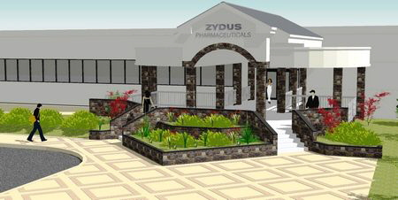 New Entrance Zydus Pharmaceutical